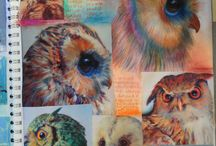 Animal research sketchbook pages