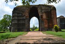 historical bengal gaur