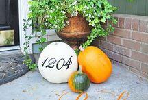 Pumpkin season! / by Marcia Bryson