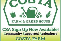 CSA Community Supported Agriculture / Buy Local Fresh Produce Near White Bear Lake, MN at Costa Farm