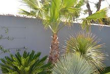 idéias pra decorar jardim