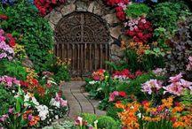 Növény ajtók