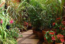 Tuin - garden / Ideeën voor vooral onze voortuin
