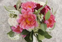 Wilmington Florists / Wilmington wedding florists
