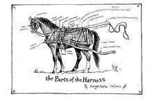 Harness parts