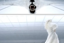 Rochie mireasa Antarctica