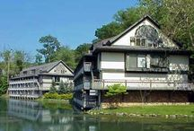Timber Top Apartments (TimberTopApts) on Pinterest