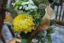 Wedding Ideas / by Kalynn Babicz