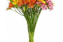May wedding Flowers / Flowers in season in May / by Debbie Boxill