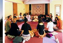 Yoga Retreats/Courses