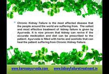 kidney diet plan