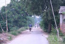 Rural Hanoi