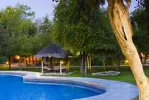 Mushara Lodge / Mushara Lodge is ideally situated on the eastern side of Etosha. The name Mushara is derived from the Purple Pod Terminalia tree which grows abundantly on the lodge grounds and in the surroundings.