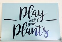Play with your Plants