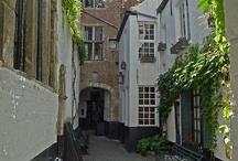 Antwerpen  in't groen