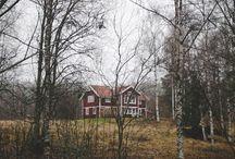 scandinavian dream !