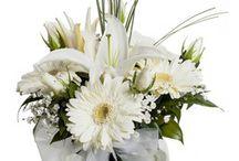 Aydın çiçek siparişi / Aydın ve çevresi için 29 Tl den başlayan fiyatlar ile Aydın çiçek siparişi verebileceğiniz çiçekçi dükkanıyız. http://www.cicekvitrini.com/cicekler/aydin-cicek-siparisi