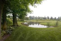 Onderhoudsarme tuin / Onderhoudsarme tuin - Esselink Hoveniers