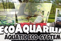 The EcoAquarium® A whole world on a desktop.