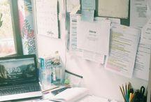 Study motivation