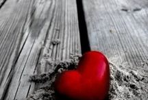 sevgiye giden yol