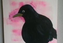 Blackbird / Merel / Birds