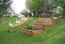 hill gardening