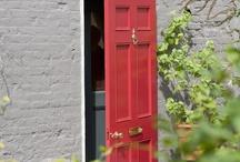voordeuren / Voordeuren geschilderd in een niet aaledaagse voor de hand liggende kleur