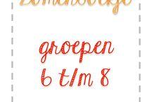 √ Groep 6 / by Nadine - Appeltjes En Peren