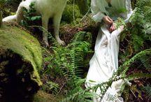 Dreamy - fairy photos