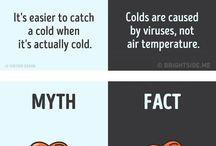 Facts & Trivias
