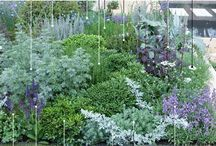 Awesome planting combos