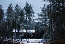 Dark forest house