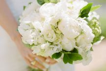 Wedding Flowers and Ideas