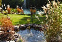 Estates: Landscaping