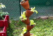 plantation verticale