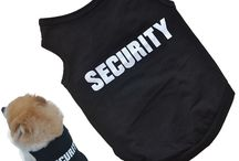 Pet clothes and accessories / Dress up your pets with styles