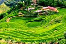 Bookingyourtravel.com / bookingyourtravel.com, we'll post many beautiful landscapes for visitor who will travel to vietnam for enjoying