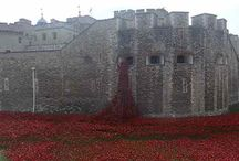 The Poppies in the Moat 2014