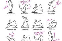 Flexibility / by Pamela Teresa