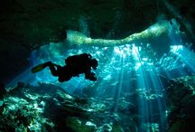 Dive <3 / by Amy Morris