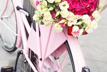 bicycle bouquets
