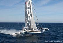 Sailing / Sailing Action