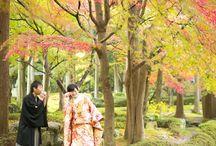 日本庭園 Japanese garden / 京都の日本庭園