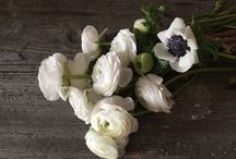 Flower co / Our works - Flower Company, Cracow , Poland