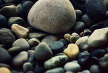 Rocks, Fossils, & Shells / i think dreamy things as i'm waving goodbye / by Samantha