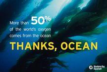 WORLD OCEAN DAY - GIORNATA MONDIALE DEGLI OCEANI