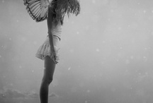 Angel-ailes-ange-plumes