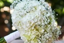 Wedding flowers and decorations / Bridal bouquets, centerpieces and decorations. / by Lynette Mitchell