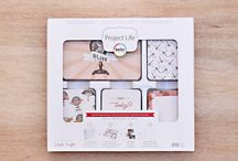 Adventure Edition Project Life / Layouts and ideas using the Adventure Edition Project Life Core kit by Becky Higgins / by Becky Higgins LLC
